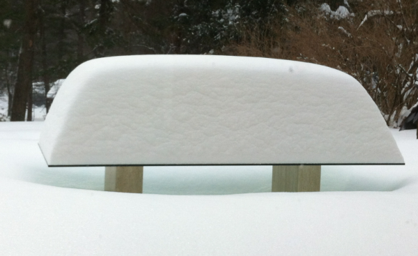 Snow storm January 2013